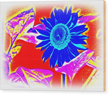 Blue Sunflower Wood Print by Pauli Hyvonen