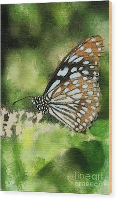 Blue Tiger Wood Print by Lois Bryan