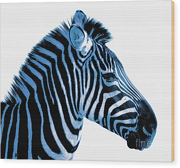 Wood Print featuring the photograph Blue Zebra Art by Rebecca Margraf