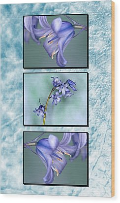 Wood Print featuring the photograph Bluebell Triptych by Steve Purnell