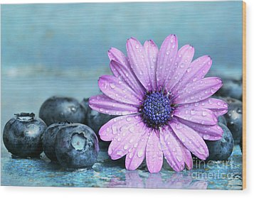 Blueberries And Daisy Wood Print by Sandra Cunningham