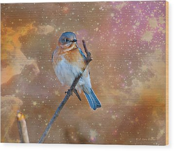 Bluebird Perched In Space Wood Print by J Larry Walker