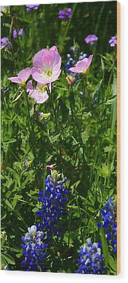 Wood Print featuring the photograph Bluebonnets And Buttercups by Lynnette Johns