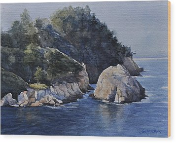 Bluefish Cove Wood Print by Sandy Fisher