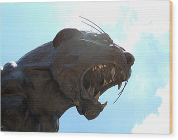 Boa Stadium Panther Wood Print by Clear Sky Images