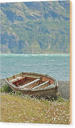 Boat And Wild Flowers By Sea Wood Print by M Moraes