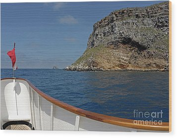 Boat Cruising By Darwin's Arch Wood Print by Sami Sarkis