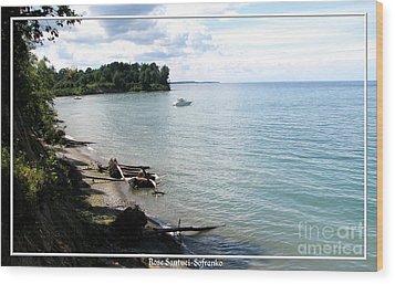 Boat On Lake Ontario Wood Print by Rose Santuci-Sofranko