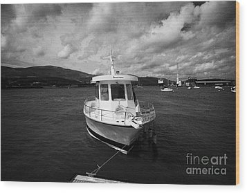 Boat Used As A Small International Passenger Ferry Crossing The Mouth Of Carlingford Lough Wood Print by Joe Fox