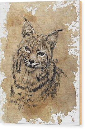 Bobcat Wood Print by Debra Jones