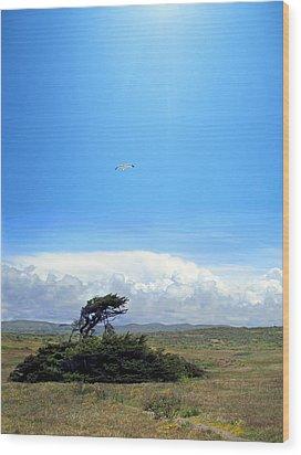 Bodega Bay Wood Print by Ric Soulen
