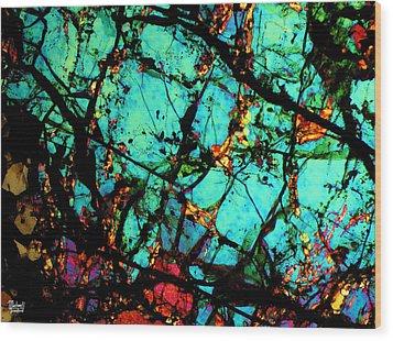 Bondac Meteorite Nwa 657 Wood Print