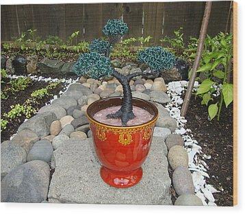 Bonsai Tree Medium Red Glass Vase Planter Wood Print by Scott Faucett