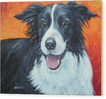 Border Collie On Red Wood Print by Dottie Dracos