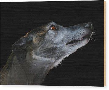 Born For The Run Wood Print by Julie L Hoddinott