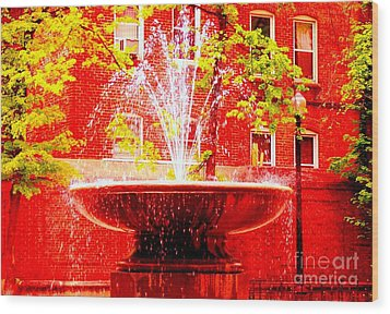 Boston Red Wood Print by Ann Johndro-Collins