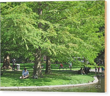 Boston Summer Wood Print by Beth Saffer