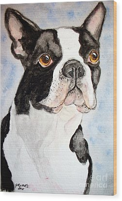 Boston Terrier Wood Print by Carol Grimes