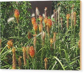 Botanic Dreams Wood Print by Michelle H