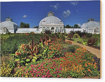 Wood Print featuring the photograph Botanical Botanical Gardens by Don Nieman