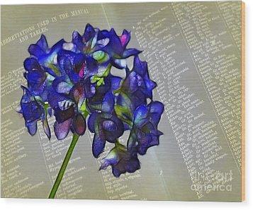 Botany Book Wood Print by Judi Bagwell