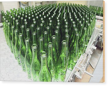 Bottles At A Wine Bottling Factory Wood Print by Ria Novosti