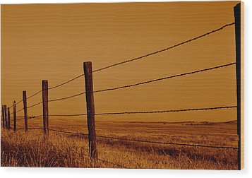 Wood Print featuring the photograph Boundary by Rima Biswas
