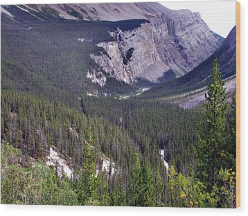 Bow River Valley Wood Print by George Cousins