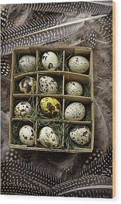 Box Of Quail Eggs Wood Print by Garry Gay
