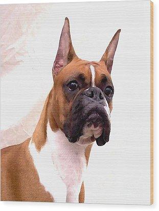 Boxer 129 Wood Print by Larry Matthews