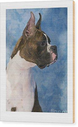 Boxer 469 Wood Print by Larry Matthews
