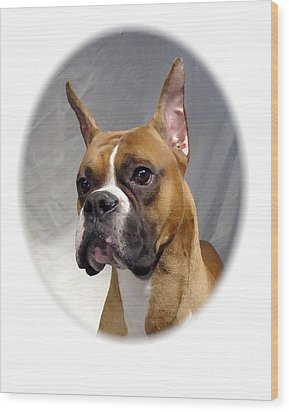 Boxer 82 Wood Print by Larry Matthews