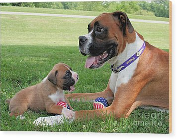 Boxer Mommy And Pup Wood Print by Renae Laughner