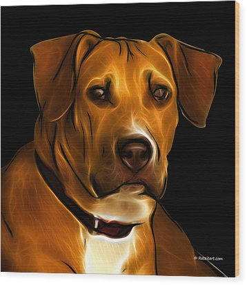 Boxer Pitbull Mix Pop Art - Orange Wood Print by James Ahn