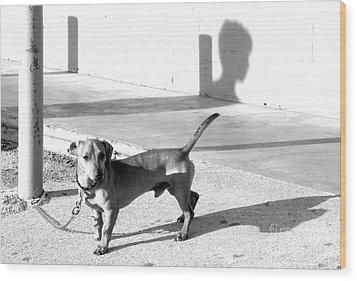 Boy Meets Dog Wood Print by Joe Jake Pratt