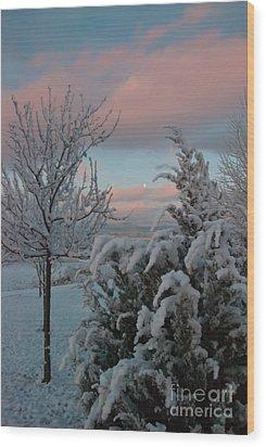Boyd Lake Winter Moonset Wood Print by Harry Strharsky