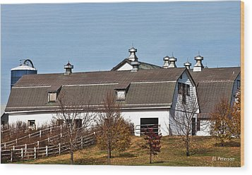 Wood Print featuring the photograph Boys Town Farm by Edward Peterson