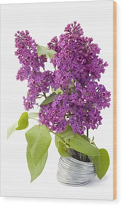 Branch Of A Lilac And Wire Wood Print