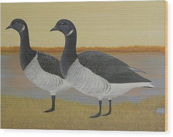 Brant Geese Wood Print by Alan Suliber