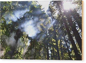 Breaking Through The Trees Wood Print