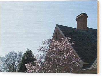 Wood Print featuring the photograph Brick And Blossom by Pamela Hyde Wilson