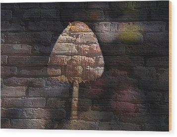Brick Mushroom Wood Print by Eric Liller