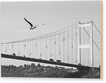 Bridge And Seagull, Bosphorus, Istanbul, Turkey Wood Print by Gulale