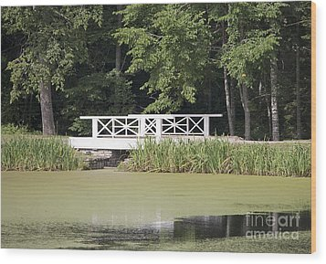 Bridge Over An Algae Covered Pond Wood Print by Jaak Nilson