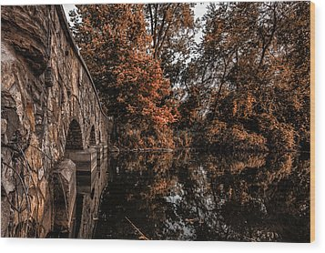 Wood Print featuring the photograph Bridge To Autumn by Tom Gort