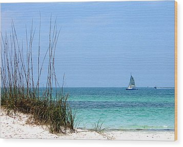 Wood Print featuring the photograph Bright Blue by Ginny Schmidt