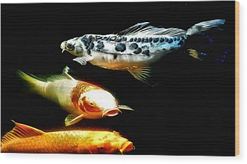 Bright Colored Fish Wood Print by Don Mann