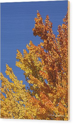 Wood Print featuring the photograph Brilliant Fall Color And Deep Blue Sky by Mick Anderson