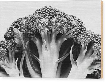 Broccoli On White Background Wood Print by Gaspar Avila