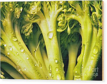 Broccoli Scape I Wood Print by Nancy Mueller